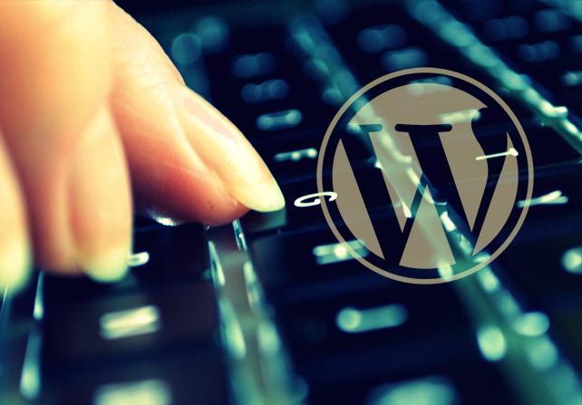 WPFront User Role Editor eklentisi ayarları